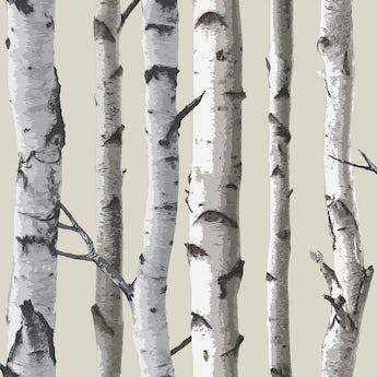 Fine Decor birch tree sidewall natural